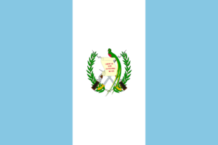 Guatemala votes - Sandra Torres who has part Belizean heritage is one of the early leaders for presidency
